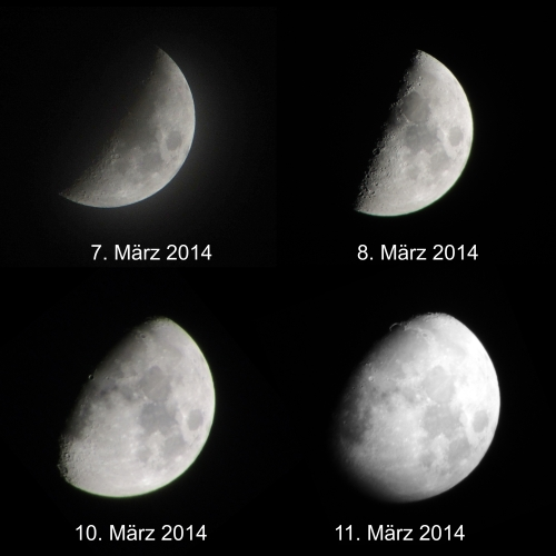 Mondbilderkomp